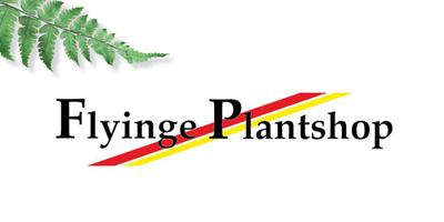 flyinge plantskola öppettider